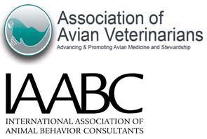 AAV IAABC
